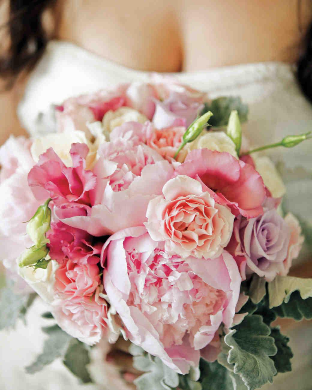 Pivonka – kráľovná kvetov